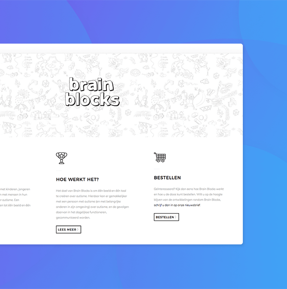 webshop Brain Blocks
